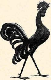 Gallo Grazzanese