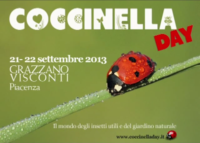 Coccinella Day il Video
